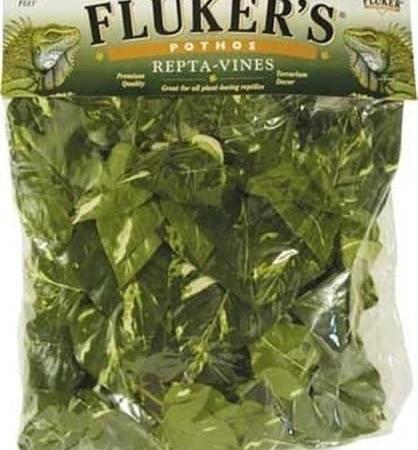 Fluker's Jungle Vines Decorations