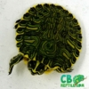 yellow belly slider for sale